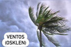 Essência Ventos